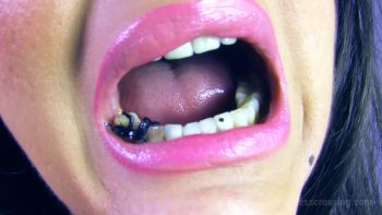 Loryelle Tasty Afternoon Mouth Fetish Vore