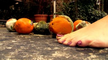 Loryelles Rotten Oranges Massacre Foot Fetish