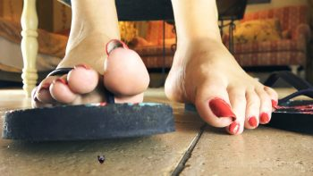 Shrunken Smashed SFX Giantess Loryelle Foot Fetish