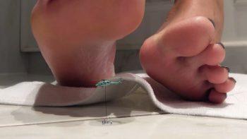 Giantess Loryelle Melting Worlds Unaware Micro Foot Fetish